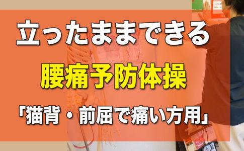 立ったままできる腰痛予防体操。松山市腰痛専門整体の施術超楽