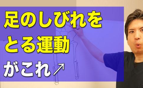 足の痺れをとるための運動。松山市腰痛専門整体の施術超楽
