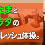 あたまとカラダのリフレッシュ体操。松山市整体の施術超楽